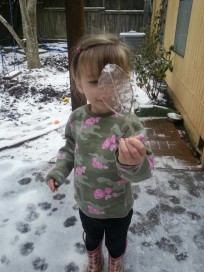 A really cool ice leaf found by Flower Girl.